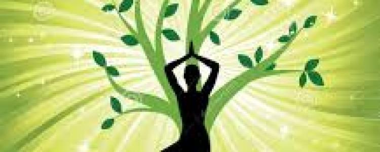 Yoga à Avril